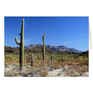 Sonoran Wüsten-Szene 13 Karte