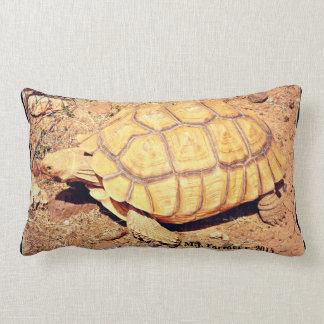 Sonoran Wüstenschildkrötelumbar-Kissen Lendenkissen