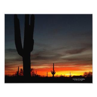 Sonoran Wüstensonnenuntergang Arizona mit Fotodruck