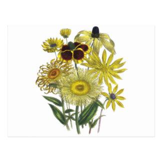 Sortierte gelbe Blumen-Vintage Grafik Postkarte