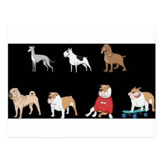 sortierte Hunde 1 Postkarte