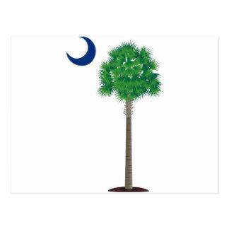 South Carolina grüner Palmettobaum und -halbmond Postkarte