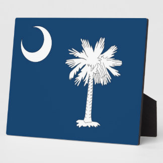 South- CarolinaStaats-Flaggen-Plakette Fotoplatte