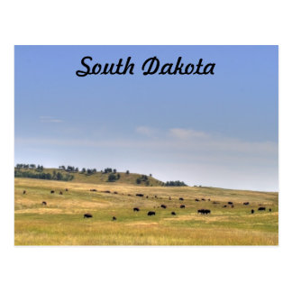 South Dakota Postkarte