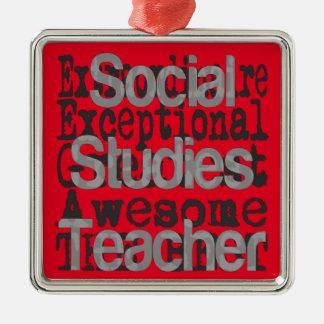 Sozialstudien-Lehrer Extraordinaire Silbernes Ornament