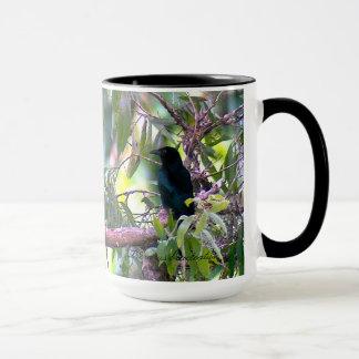 Spangled Drongo-Tasse Tasse