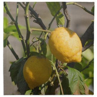 Spanische Zitronen-Grafiken Stoffserviette