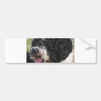 Spanischer Wasser-Hund b/w.png Autoaufkleber
