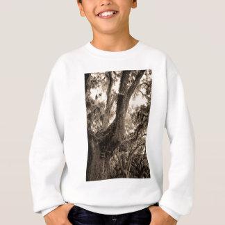 Spanisches Moos schmückte Live Oak in den Sweatshirt