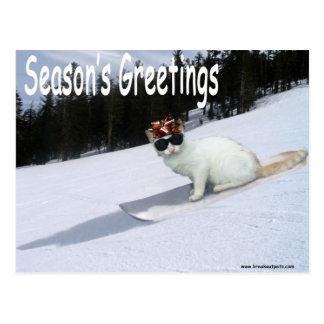 Spaß-Katze auf einer Snowboard-Postkarte Postkarte