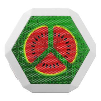 Spaß-Wassermelone-Friedenshelle Farben Weiße Bluetooth Lautsprecher