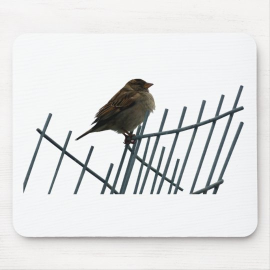Spatz auf Zaun - Foto Mousepad