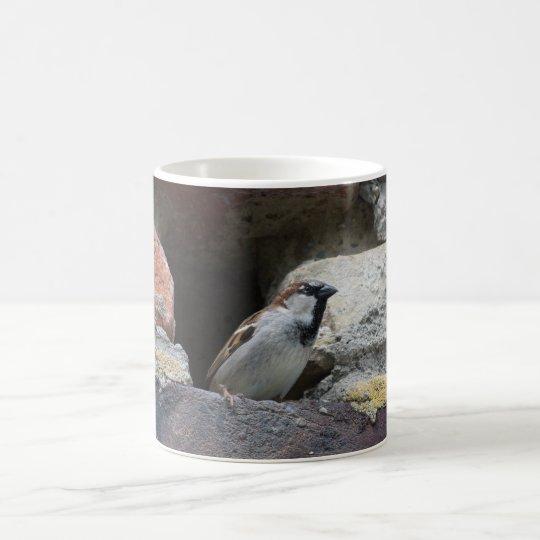 Spatz sparrow kaffeetasse