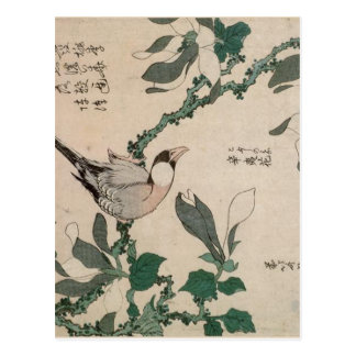 Spatz und Magnolie durch Katsushika Hokusai Postkarte