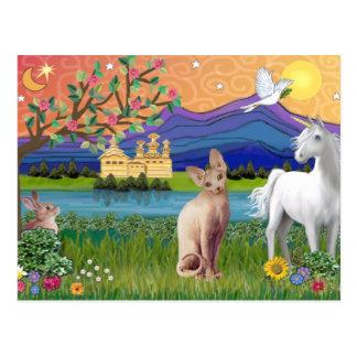 Sphynx Katze 1 - Fantasie-Land Postkarte