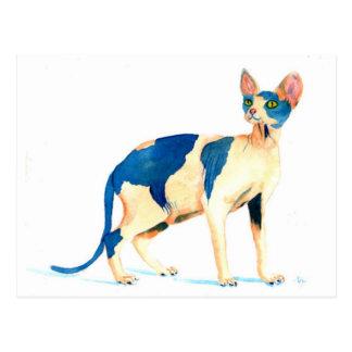 Sphynx Katze 5 Postkarte