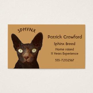 Sphynx Katzen-Brüter und Training Visitenkarte