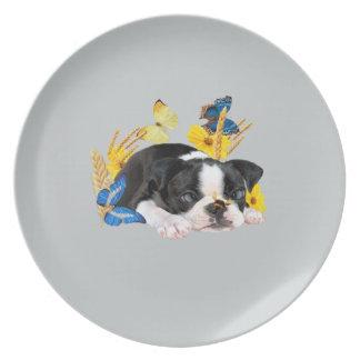 Spiel-Tag Bostons Terrier Teller