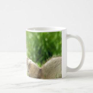 Spielen der Frettchen-Tasse Kaffeetasse