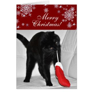 Spielen von Katze Weihnachten Karte