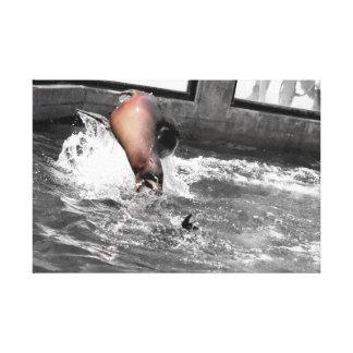 Spielerischer Seelöwe Leinwanddruck