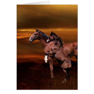Spielerisches junges Pferd Karte