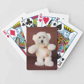 Spielkarten - Bruiser