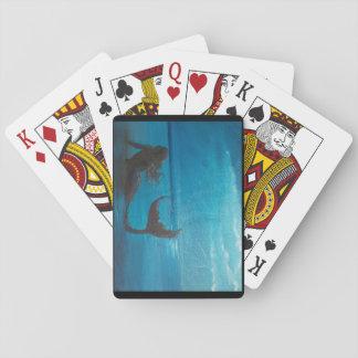 """Spielkarten """"der Sturmbeobachtung"""""""
