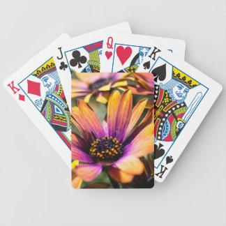 Spielkarten des hellen Gänseblümchens - addieren