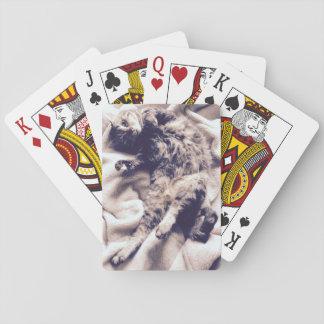 Spielkarten - Erdnuss