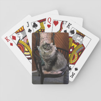 Spielkarten König-Cat Kimber