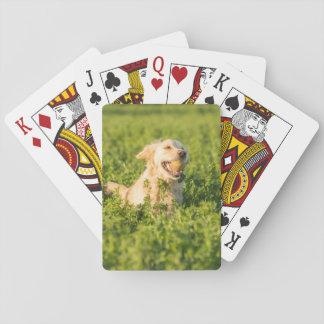 Spielkarten mit vorderem Bild des golden retriever