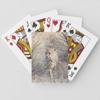 Spielkarten mit vorderem Bild von Gepardjagd