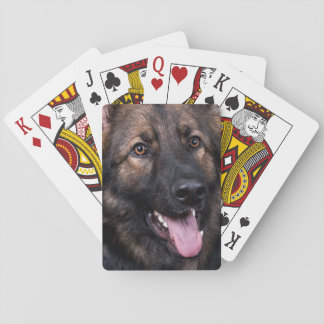 Spielkarten Schäferhund-Hundeelsässer