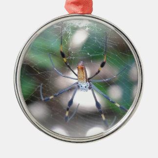 Spinne im Spinnennetz Silbernes Ornament