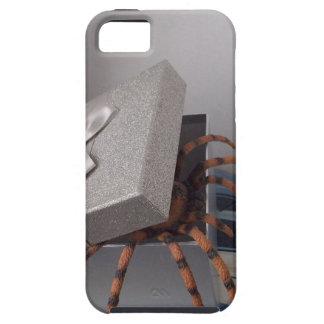 Spinne in den Geschenkboxen Hülle Fürs iPhone 5