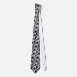 Spinne in den Geschenkboxen Krawatte