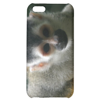 Spinnen-Affe iPhone Fall iPhone 5C Cover