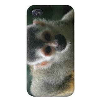 Spinnen-Affe iPhone Fall Hülle Fürs iPhone 4
