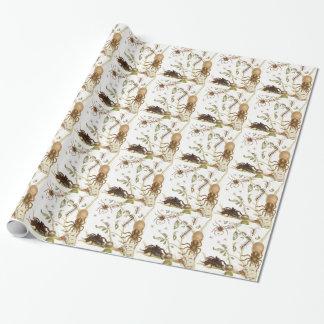 Spinnen, Ameisen und Kolibri auf einer Geschenkpapier