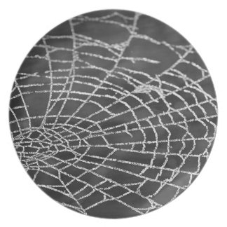 Spinnen-Netz Flacher Teller