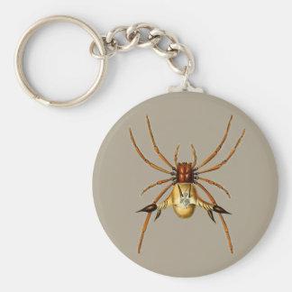 Spinnen Schlüsselanhänger