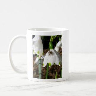 Spinnen-Übersichten von einem Snowdrop Kaffeetasse