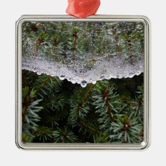 Spinnennetz Silbernes Ornament