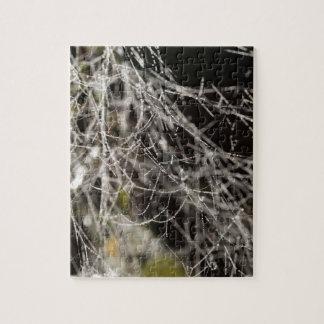 Spinnennetze mit Tautropfen Puzzle
