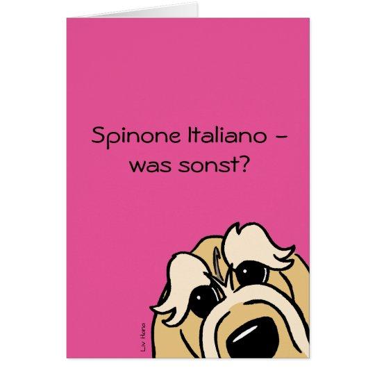 Spinone Italiano - was sonst? Karte