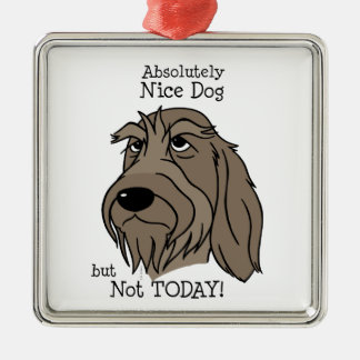 Spinone Nice dog Silbernes Ornament