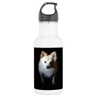 Spitz-Hund in der Dunkelheit Trinkflasche