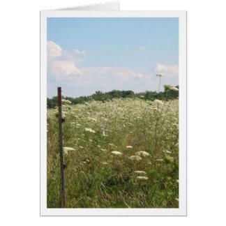 Spitze-Bauernhof Notecard der Königin-Anne Karte