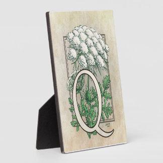 Spitze-Blumen-Monogramm der Königin-Anne Fotoplatte